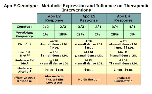 What in the heck is apoe and why does it reveal your for Does fish oil lower triglycerides