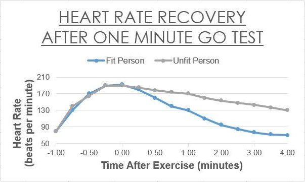 how a faster pulse rate after If you want to determine your maximum heart rate,  and at the end of the test the treadmill forces the person to run fast and the incline is high so the stress test determines how fit you are .