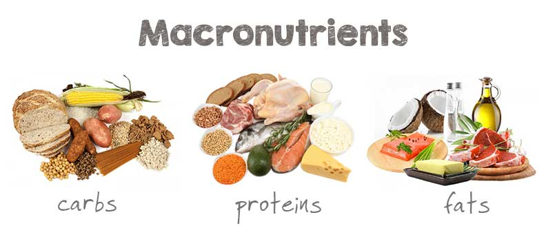 holiday fat loss tips include choosing healthy macronutrients